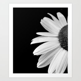 Half Daisy in Black and White Art Print