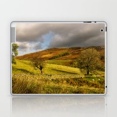 Gowbarrow Fell, Lake District Laptop & iPad Skin