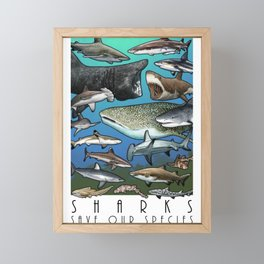 Save Our Species - Sharks Framed Mini Art Print