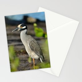 Yellow Crown Night Heron Stationery Cards