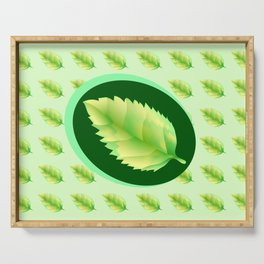 Green leaf of the tree. Leaf linden or apple for background or a logo or a pattern. Serving Tray