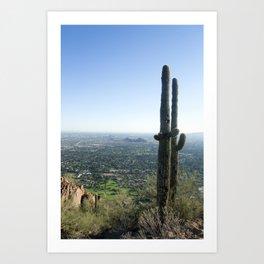 The Sonoran Desert Art Print