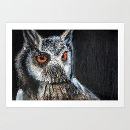 Dark Night, Eyes Bright Art Print