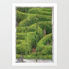 Garden Labrynth Art Print