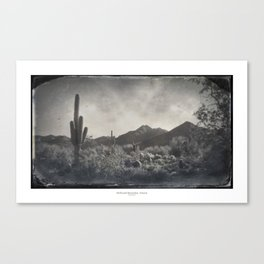 McDowell Mountains, Arizona Canvas Print