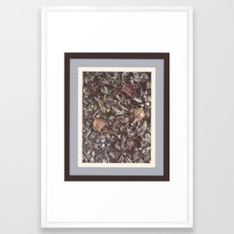 Forest litter #1 Framed Art Print
