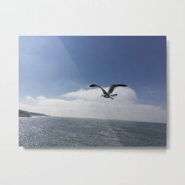 Flying Free Metal Print