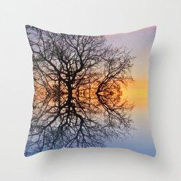 Evening sky trails Throw Pillow