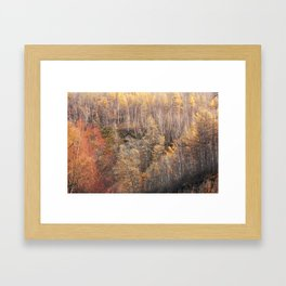 The autumn color Framed Art Print