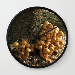 Mushrooms in the Spotlight #2 Wall Clock