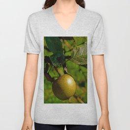 hanging apple Unisex V-Neck