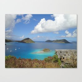 Water Lemon Cay, St. John, Virgin Islands Canvas Print