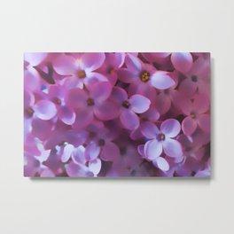 Lilac blur Metal Print