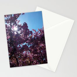 Sweet Creations Stationery Cards