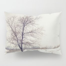 Breathing Space Pillow Sham