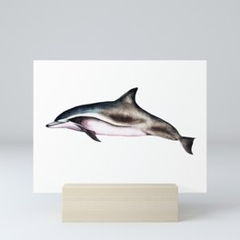 Clymene Dolphin Mini Art Print