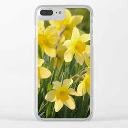Yellow spring daffodil Photography Clear iPhone Case