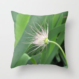 seed head Throw Pillow