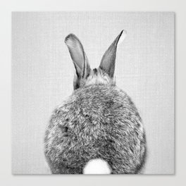 Rabbit Tail - Black & White Canvas Print