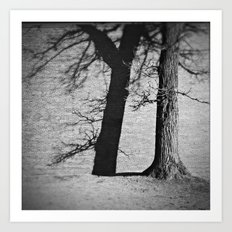 winter shadows . ii Art Print