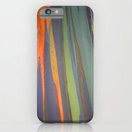 Rainbow Eucalyptus Magic iPhone Case