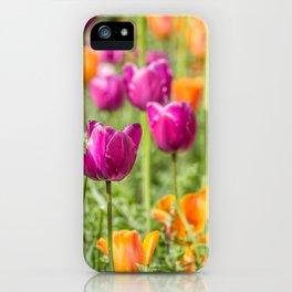 Tulip Medley iPhone Case