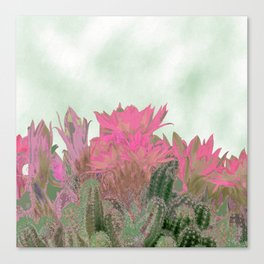 Succulenta Canvas Print