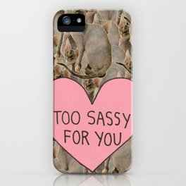 Sassy Cats iPhone Case