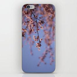 Prunus iPhone Skin