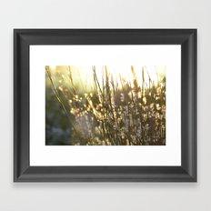 Highline Framed Art Print