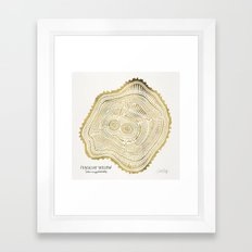 Peachleaf Willow – Gold Tree Rings Framed Art Print