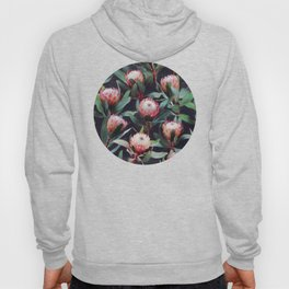 Evening Proteas - Pink on Charcoal Hoody