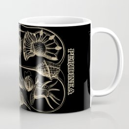 """""""Peridinea"""" from """"Art Forms of Nature"""" by Ernst Haeckel Coffee Mug"""