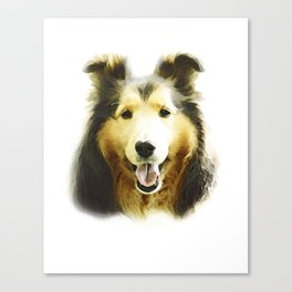Cute Shetland Sheepdog Puppy Canvas Print