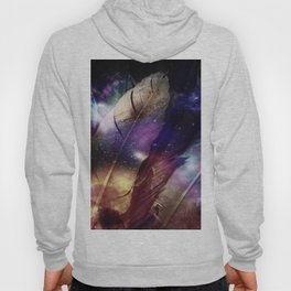 feathers in space Hoody