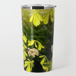 Flowering Aesculus horse chestnut foliage Travel Mug