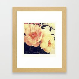 beautiful flowers - two Framed Art Print