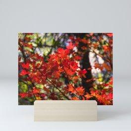 Red Fall Foliage Mini Art Print
