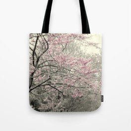 Pleasantville Tote Bag