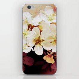 Blossom 06-18 iPhone Skin