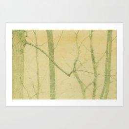 yellow winter trees Art Print