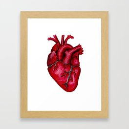 Anatomical Heart Painting Red Framed Art Print