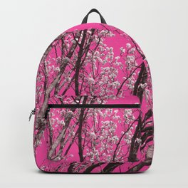 Sky As Toile Backpack