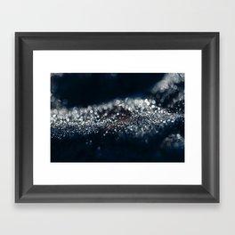 Drops of Light Framed Art Print