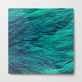 Teal Feathers Metal Print