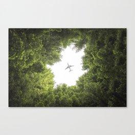 East Warburton Redwood Forest - Australia Canvas Print