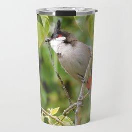 Red-Whiskered Bulbul -- 2 Travel Mug