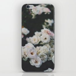 Cold Roses iPhone Skin