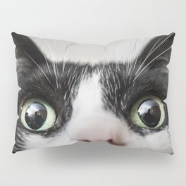 Funny Cat Pillow Sham