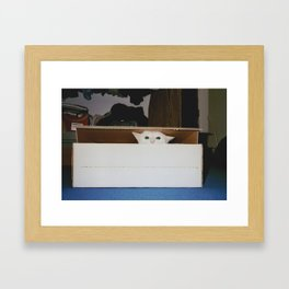 Angriest cat around Framed Art Print